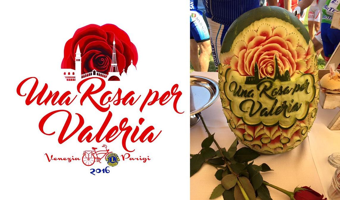 2016-07-11 Rosa per Valeria a
